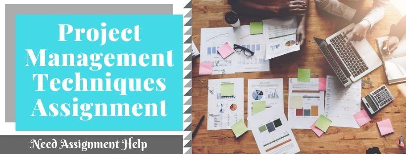 Project Management Techniques Assignment