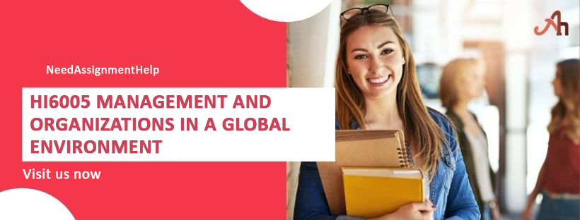 HI6005 Management and Organizations in a Global Environment