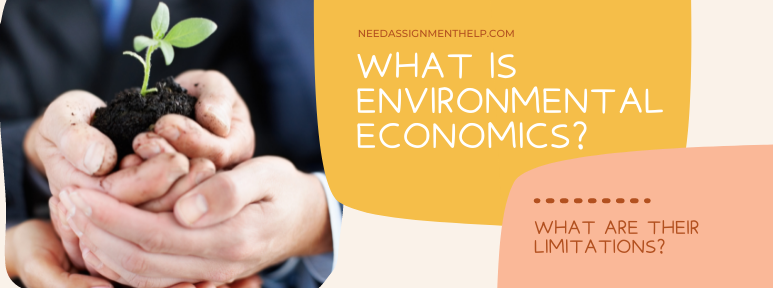 What is Environmental Economics? What are the Limitations of Environmental Economics?